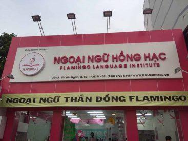 thi cong bang hieu